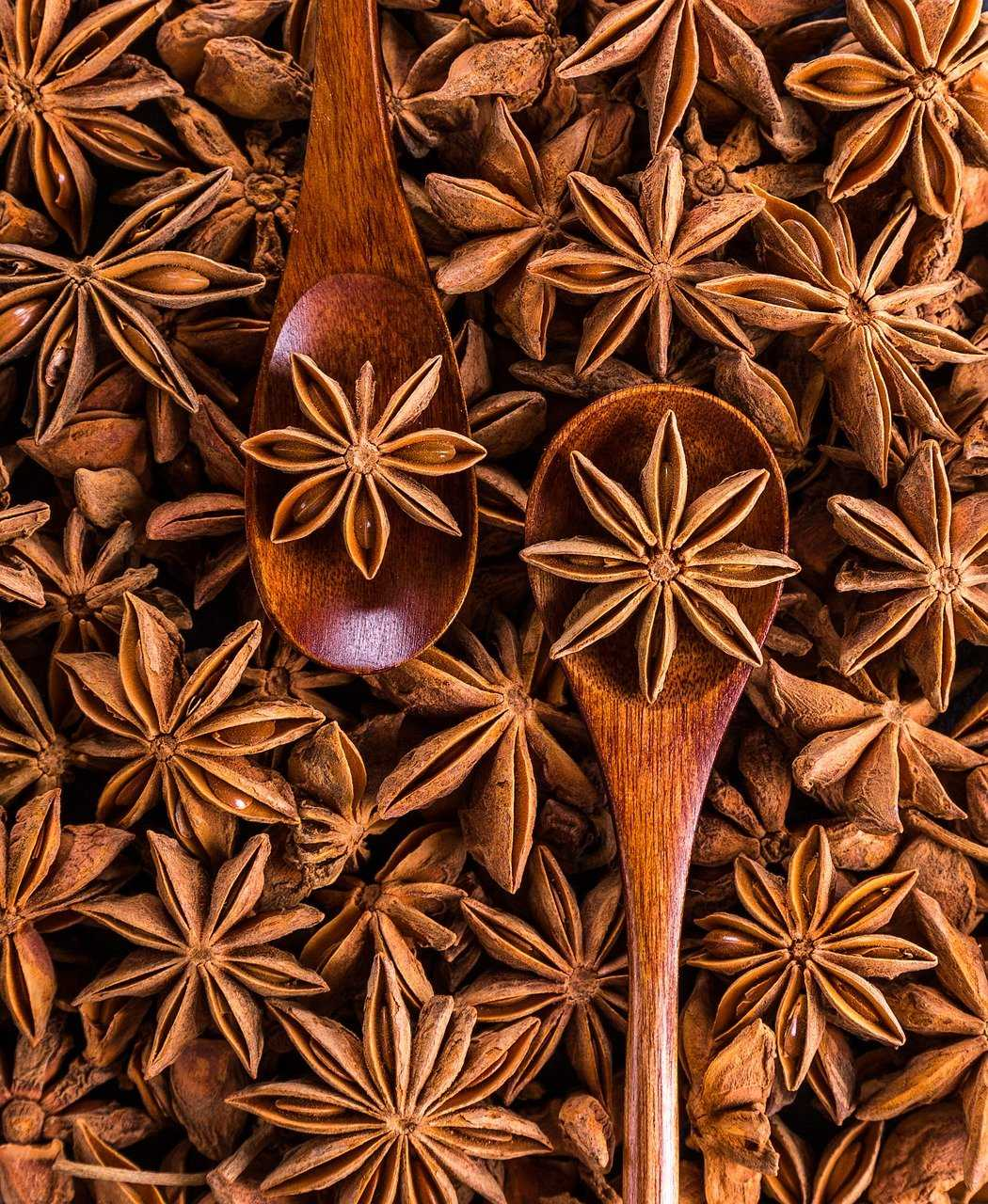 star anise, spices, spoon